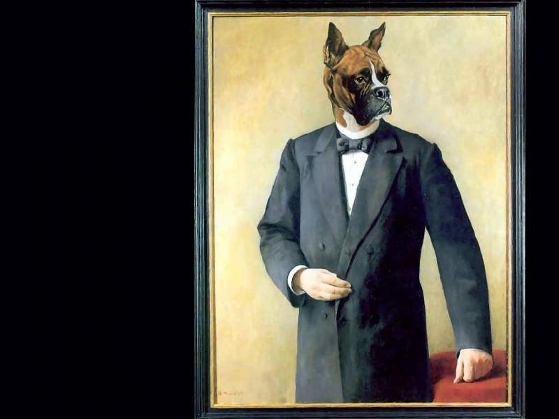 dog portraits edouard coupe de ville. Thierry Poncelet