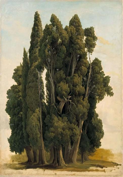 Cypresses. Study. Gustaf Wilhelm Palm