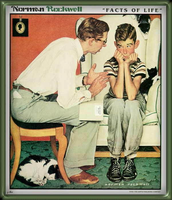 Facts Of Life. Norman Rockwell