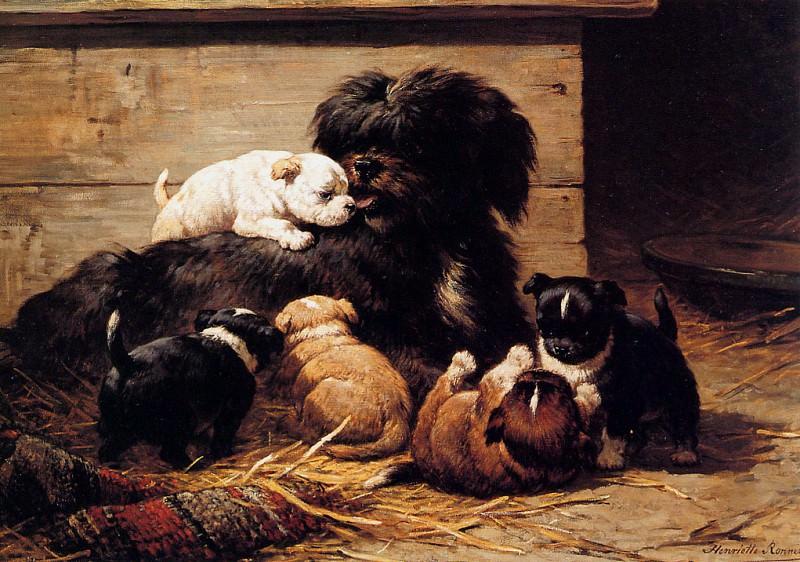 Собака со щенятами (картина) — Генриетта Роннер-Книп