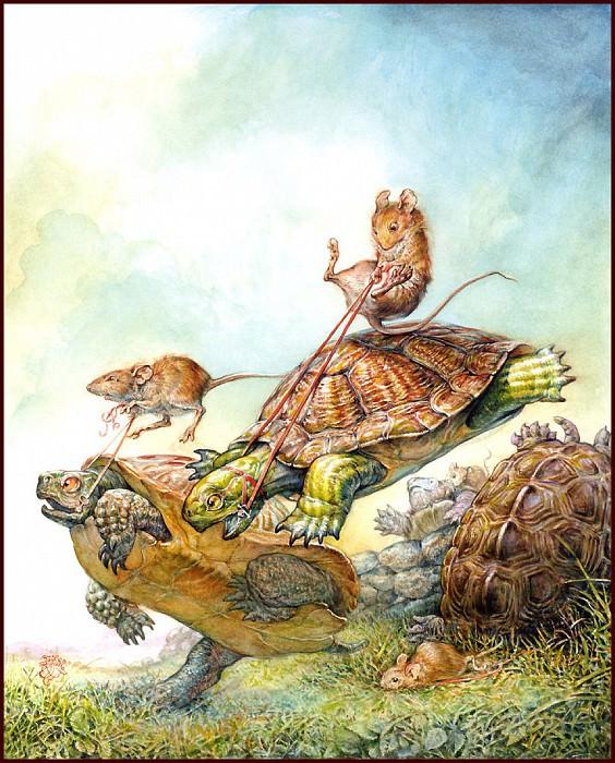 Turtle Race. Omar Rayyan