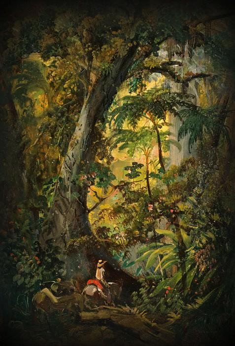 Всадник в тропическом лесу. Иоганн Мориц Ругендас