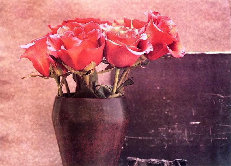 Maria Robledo - Red Rose, De. Maria Robledo