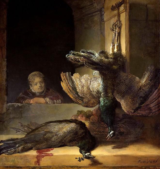 Stilleven met pauwen. Rembrandt Harmenszoon Van Rijn