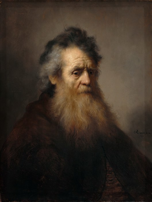 Portrait of an Old Man. Rembrandt Harmenszoon Van Rijn