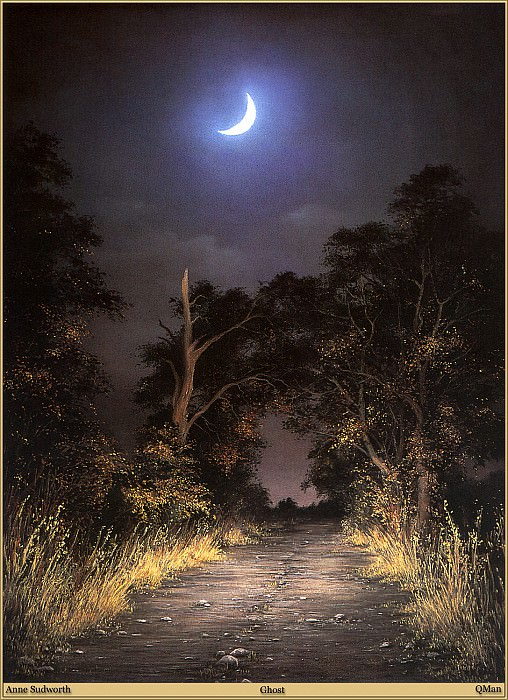 QMan AS EW 1557 Ghost. Anne Sudworth