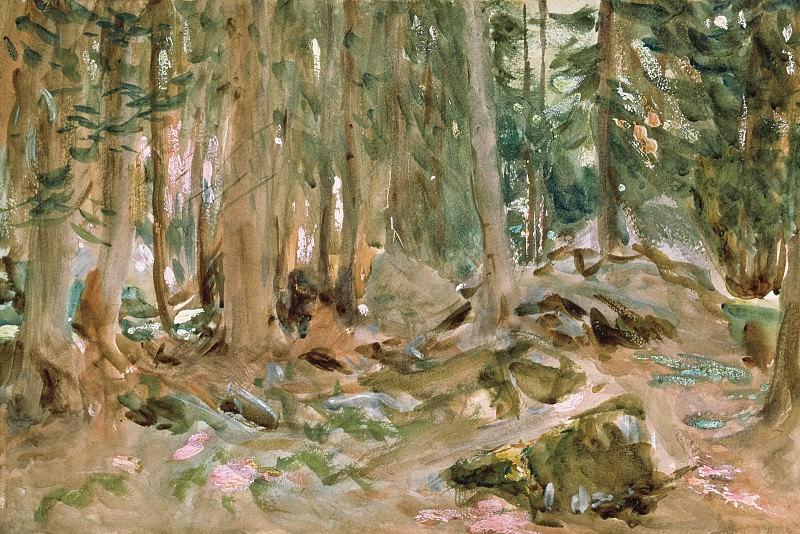 Pine Forest, Sargent - 1600x1200 - ID 8059. Сарджент,