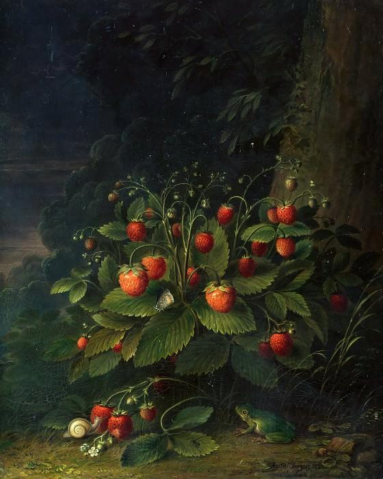 Strawberries. Adam Schlesinger