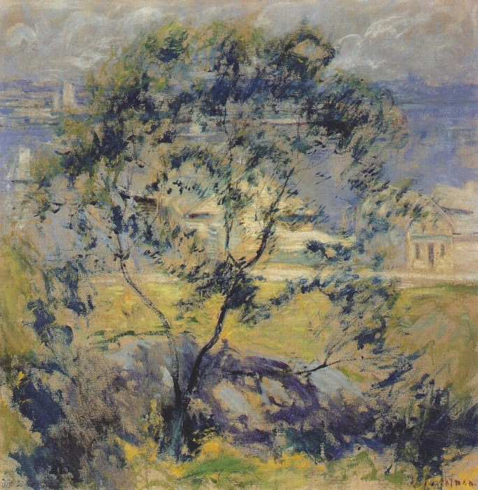 twachtman the wild cherry tree c1901. John Henry Twachtmann