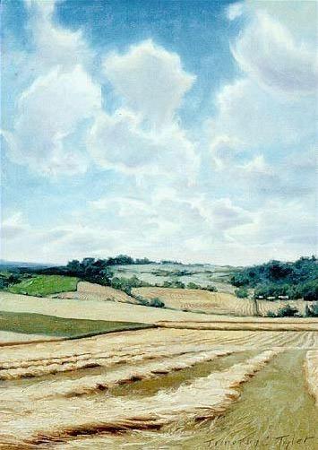 hayfields. Timothy C Tyler
