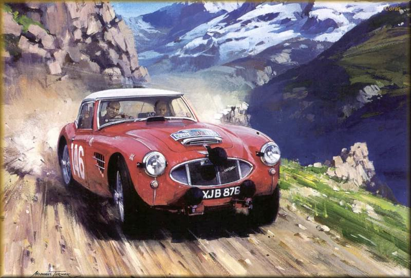 CorsaScan 016 Works Healey In The Alpine Cup. Michael Turner