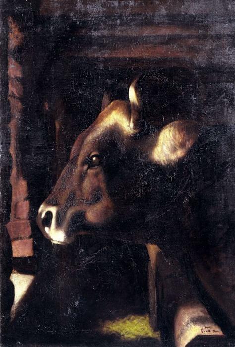 Голова быка. Чезаре Таллоне