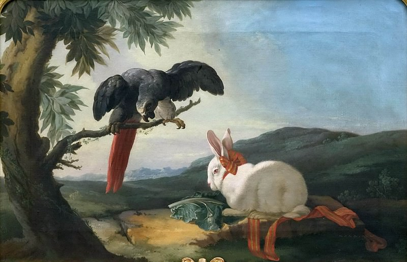 Parrot and Rabbit. Unknown painters