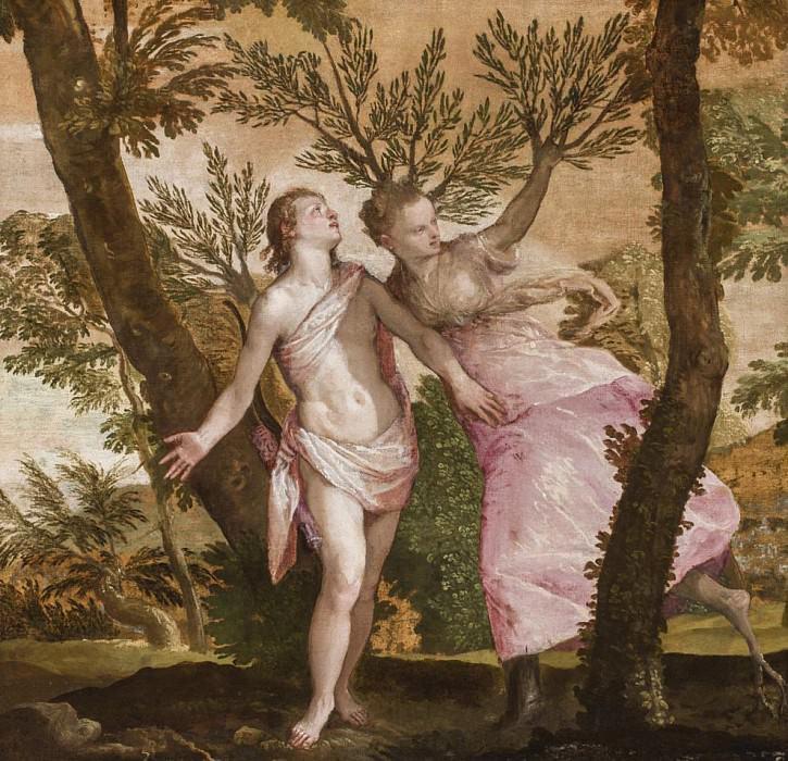 Аполлон и Дафна. Веронезе (Паоло Кальяри)