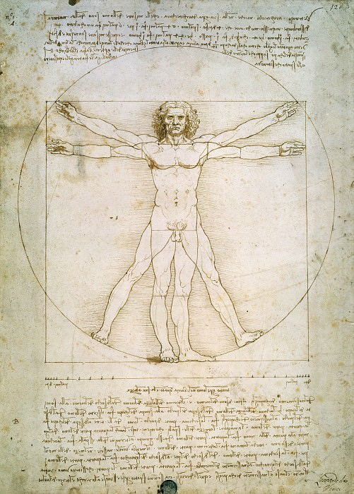 Vitruvian Man. Leonardo da Vinci