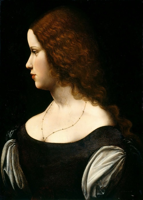 Portrait of a Young Lady (Follower of Leonardo da Vinci). Leonardo da Vinci