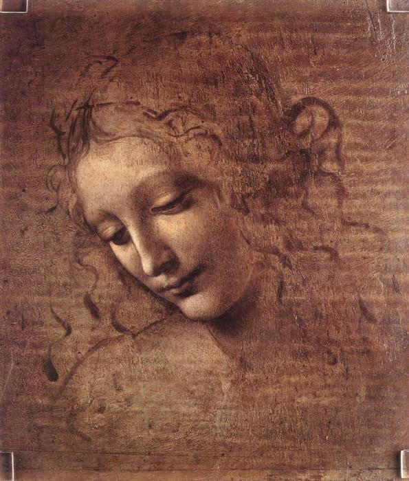 Female head. Leonardo da Vinci