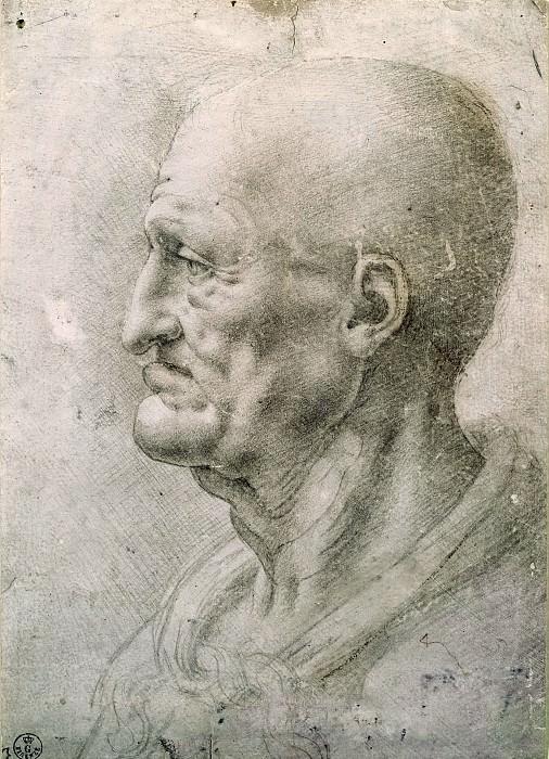 Study of an old man. Leonardo da Vinci