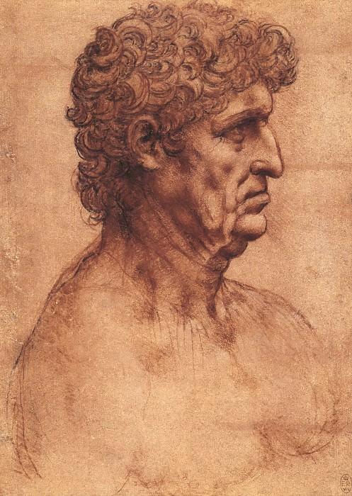 The bust of a man in profile. Leonardo da Vinci