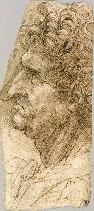 Head of a Man in Profile. Leonardo da Vinci