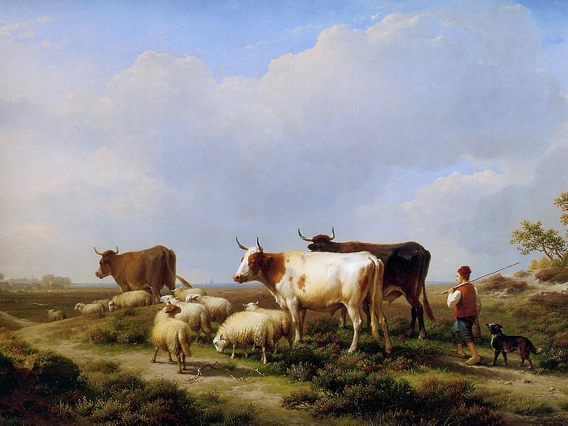 Verboeckhoven Eugйne Cow Sun. Eugene Joseph Verboeckhoven