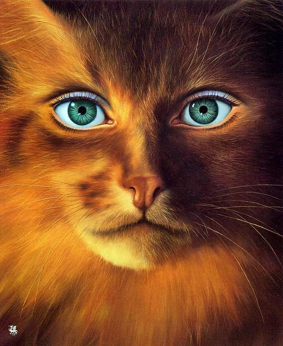 Cat-Woman. Джим Уоррен
