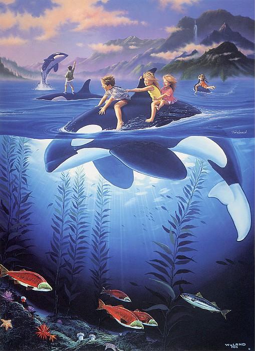 Whale Rides. Джим Уоррен