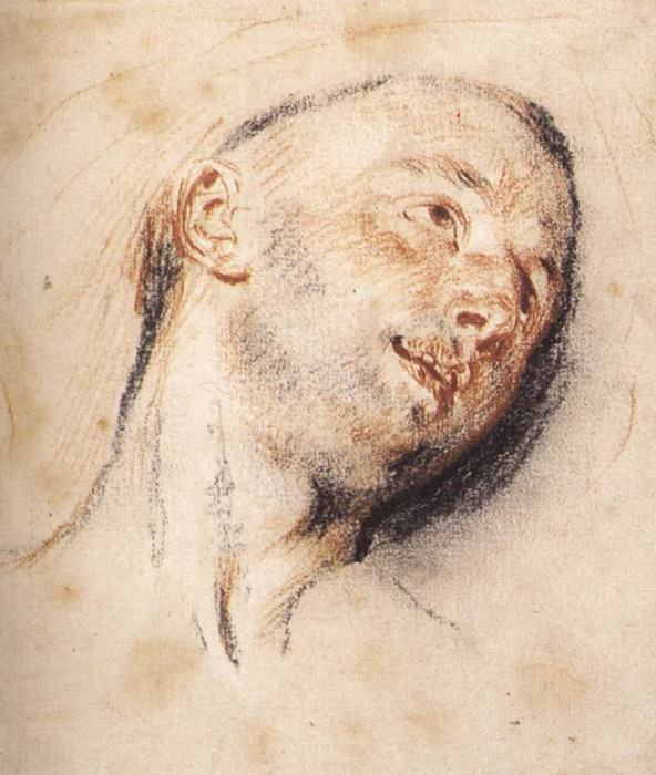 Head of a Man WGA. Jean-Antoine Watteau
