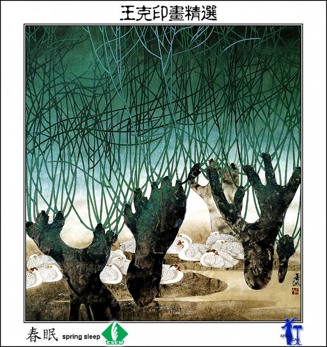 CSCU aping 2k3 wang ke yin 002. Wang Ke Yin