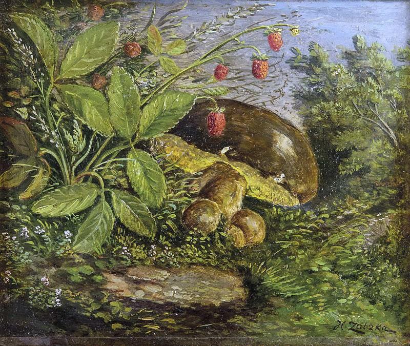 Поляна с белыми грибами и земляникой. Ханс Зацка