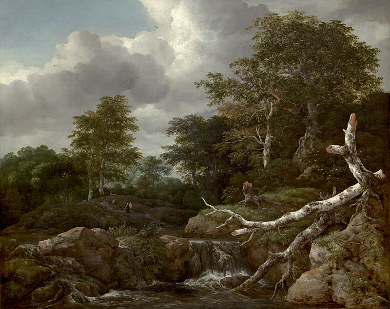 Jacob van Ruisdael - Forest Scene. National Gallery of Art (Washington)