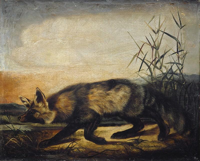 John Woodhouse Audubon - Long-Tailed Red Fox. National Gallery of Art (Washington)