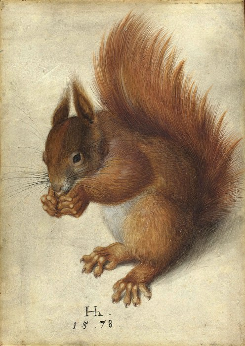 Hans Hoffmann - Red Squirrel. National Gallery of Art (Washington)