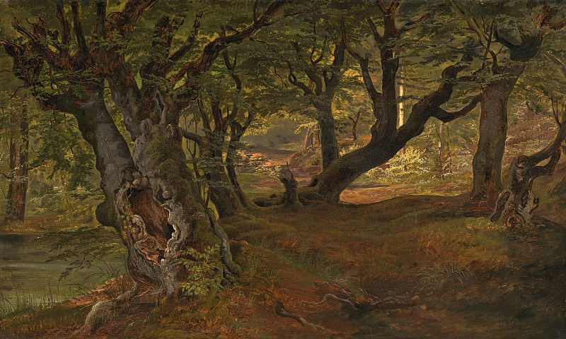 Frederik Sodring - View of Bregentved Forest, Sjaeeland. National Gallery of Art (Washington)