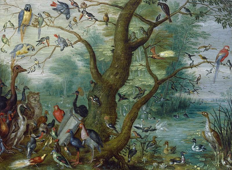 Circle of Jan van Kessel - Concert of Birds. National Gallery of Art (Washington)
