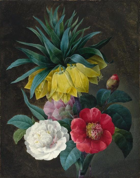 Редут, Пьер-Жозеф - Четыре пиона и «Корона империи». Национальная галерея искусств (Вашингтон)