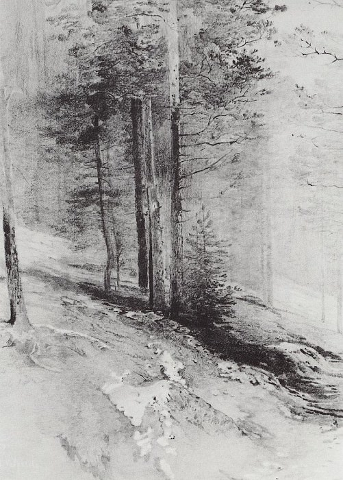 Forest. 1877. Alexey Kondratievich Savrasov