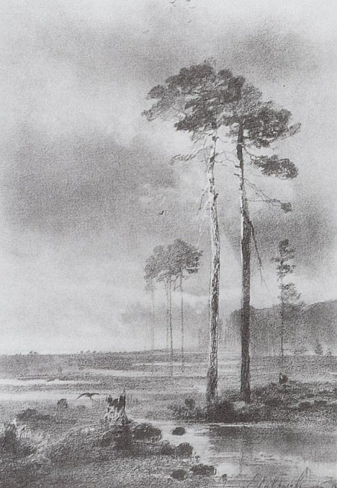 Pines near the swamp. 1882. Alexey Kondratievich Savrasov