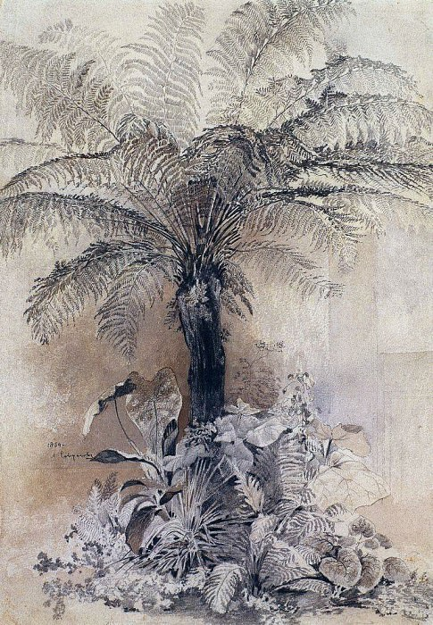 tropical plants. Tree-fern. 1854. Alexey Kondratievich Savrasov
