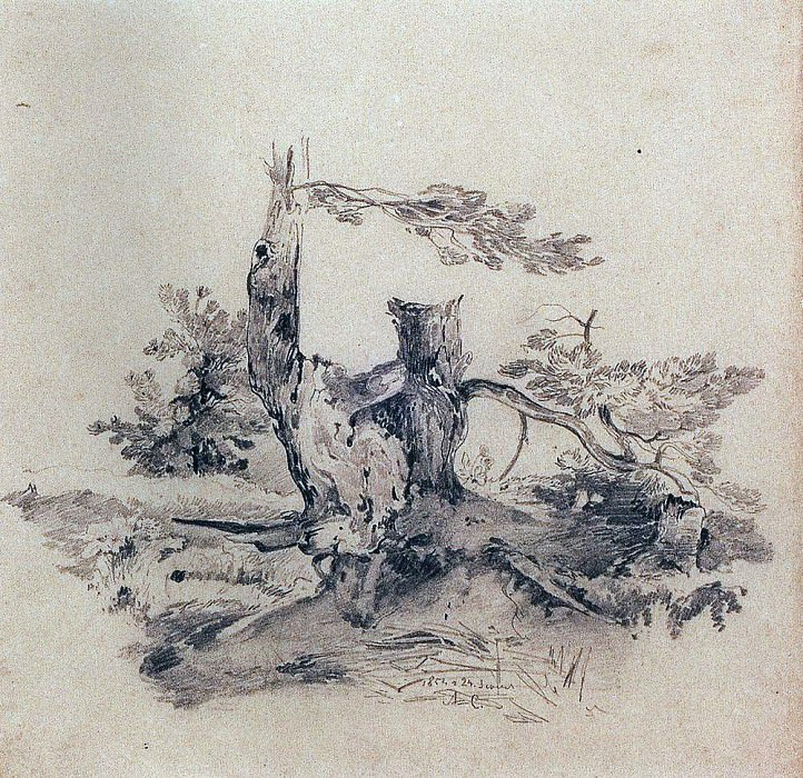 Pines, adjacent to the root of the tree trunks. 1854. Alexey Kondratievich Savrasov