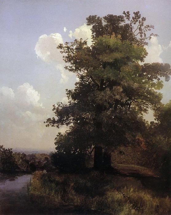 Дубы. 1855. Алексей Кондратьевич Саврасов