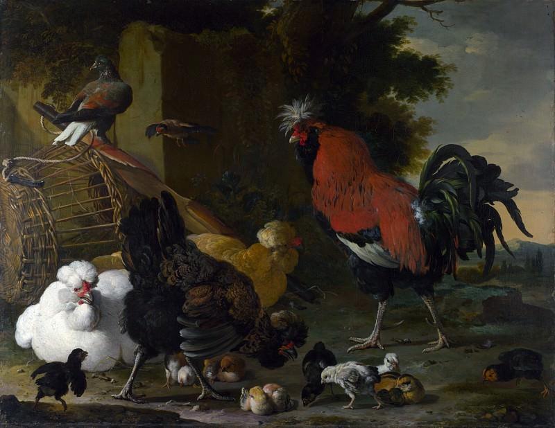 Мельхиор Хондекутер - Петух, курицы и цыплята. Часть 5 Национальная галерея