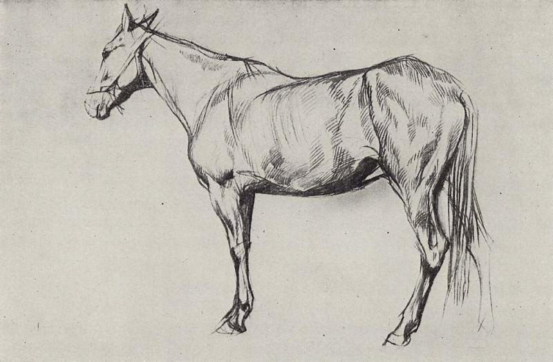 Horse. 1884. Valentin Serov