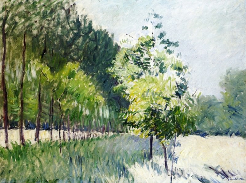 Lane Bordered by Trees. Gustave Caillebotte