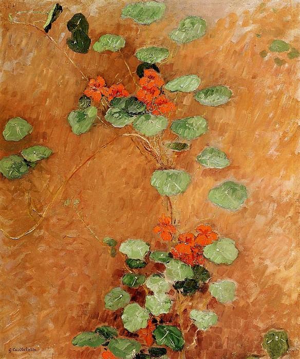 Nasturtiums - 1892. Gustave Caillebotte