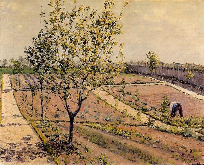 Kitchen Garden, Petit Gennevilliers - 1882. Гюстав Кайботт