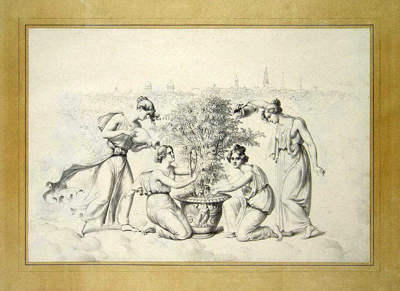 Schopp, Julius Senior. Live pictures. Cultivation of the Roses. Hermitage ~ part 13