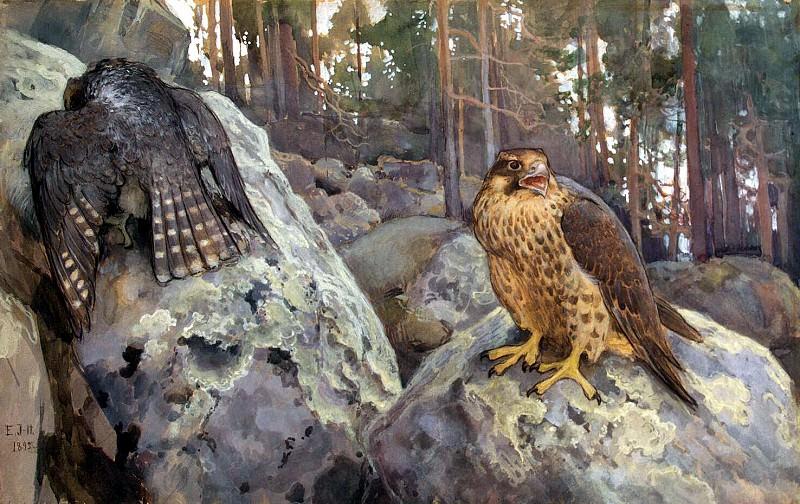 Järnefelt Eero Nicolai. Hawks in the woods. Hermitage ~ part 13