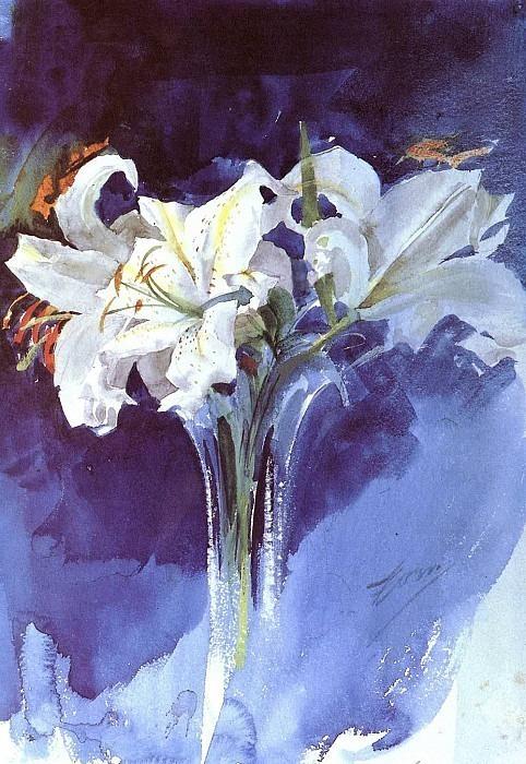 Vita Liljor. Anders Zorn