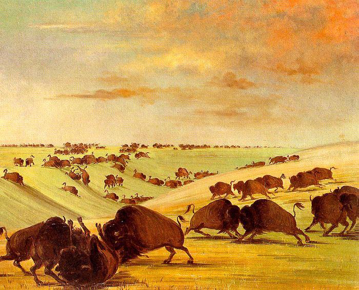 Catlin, George (American, 1796-1872) 1. American artists